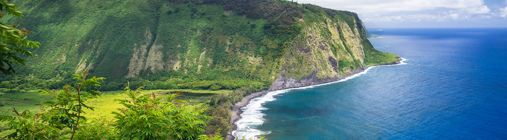Lush greenery goes all the way to the coast of a deep blue ocean on the right, with a large cliff rounding out the coastline.