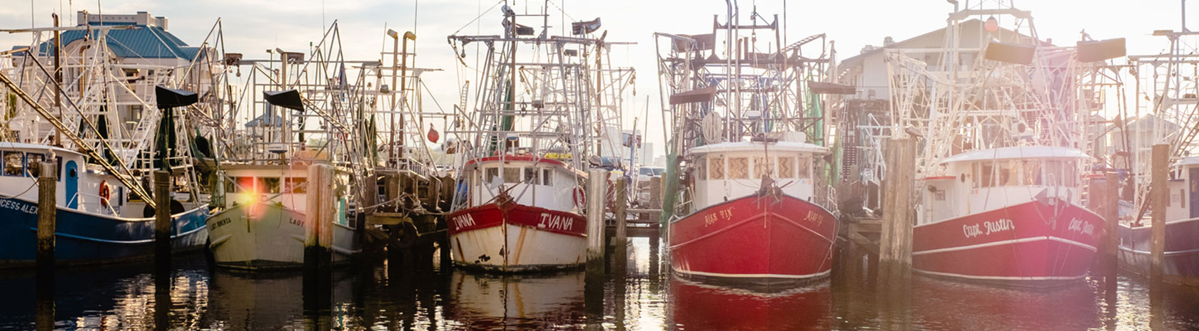 A string of fishing boats docked side by side just hours before sunset