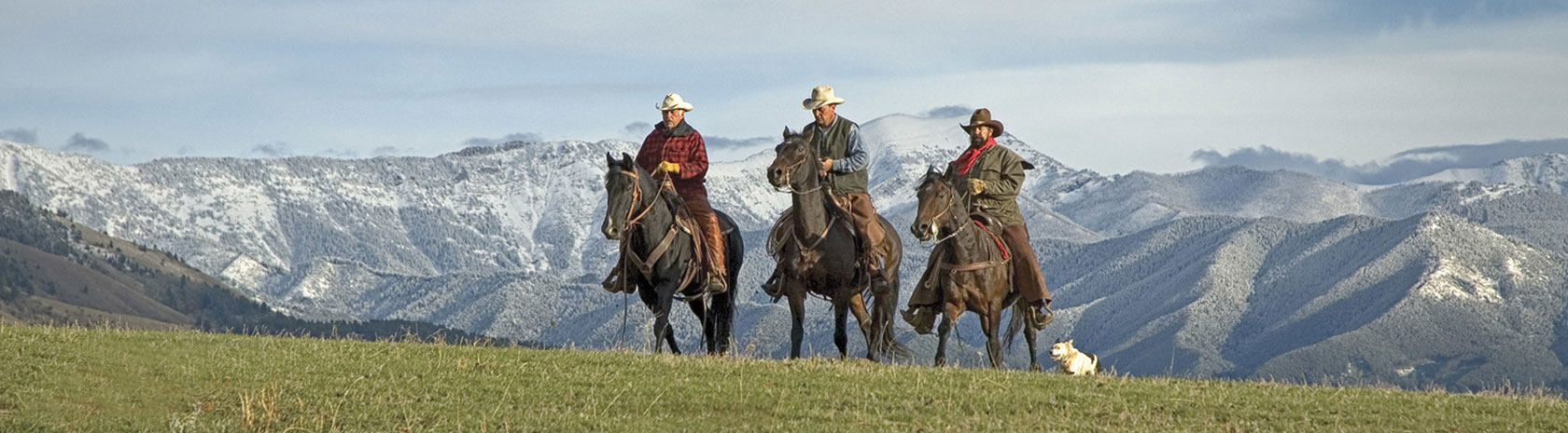 Three ranchers on horseback along side a white dog riding up over the top of a grassy plain with rolling hills in the background