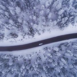 Arial view of a road through snowy trees