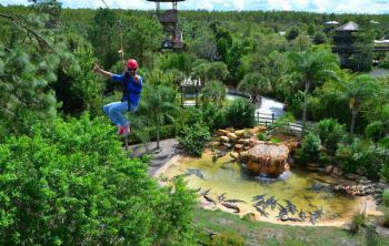 Someone ziplining above lush green trees in Kissimmee, Florida